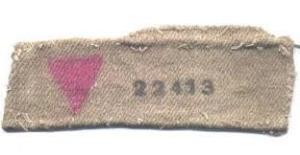 Pink-Triangle-Uniform